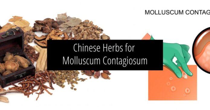 Chinese herbs for Molluscum Contagiosum