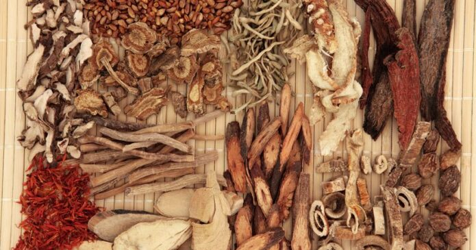 Chinese herbs for osteoporosis