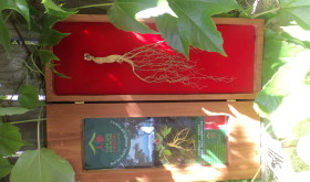 Kiwiseng- New Zealand Ginseng
