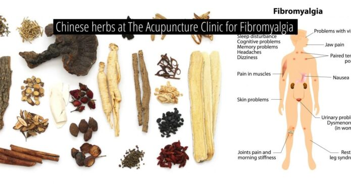 Fibromyalgia at The Acupuncture Clinic