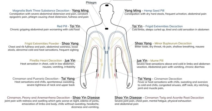 Shang-Han-Lun-the-acupuncture-clinic