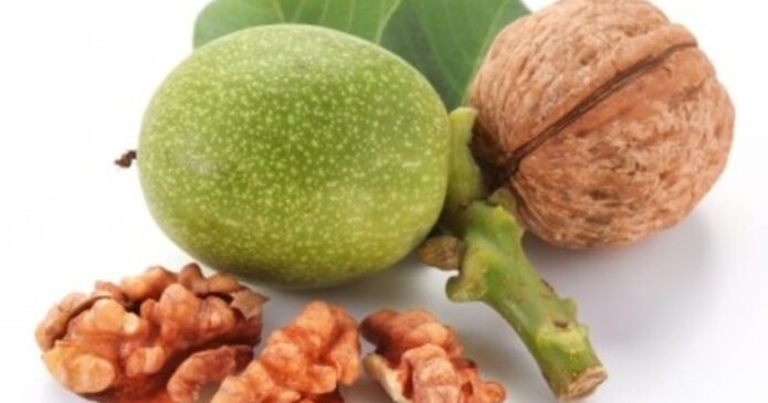 Walnut, one of the many Chinese herbs for fertility